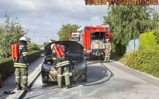 Anrainer halten Pkw-Brand mit einem Handfeuerlöscher unter Kontrolle