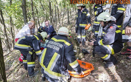 Verletzter Mountainbiker aus Wald gerettet