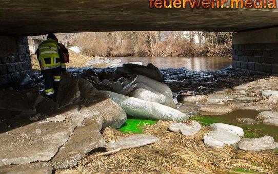 Grüner Kremsfluss – Besorgte Bürger alarmieren die Feuerwehr