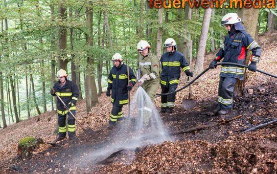 Waldbrand am Wachauer Seekopf