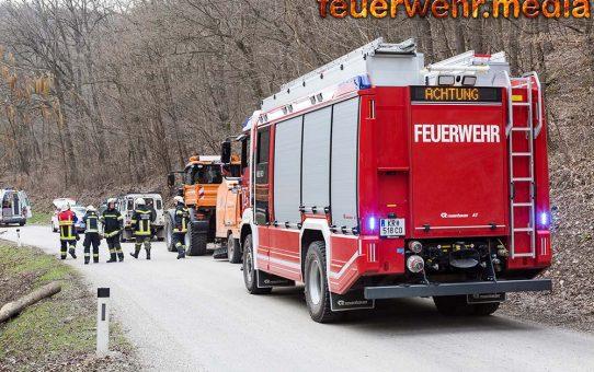 Feuerwehr und Rettungsdienst bei Forstunfall im Dunkelsteinerwald im Einsatz