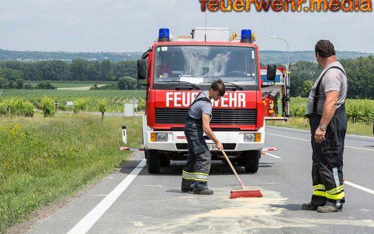 Feuerwehr Palt nach Auffahrunfall auf der L100 im Einsatz
