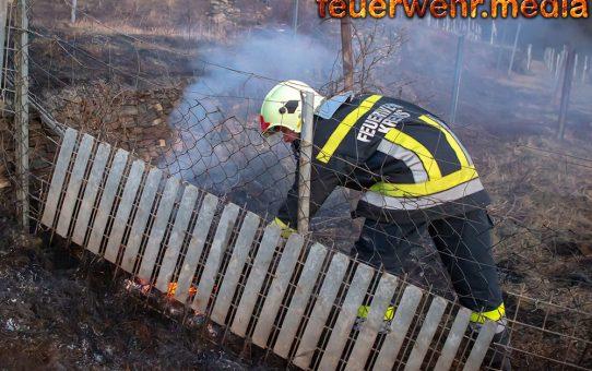Flurbrand in schwer zugänglichen Gelände in Rehberg