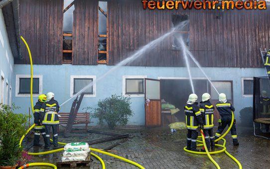 Stallgebäude mit 600 Ferkel in Brand geraten