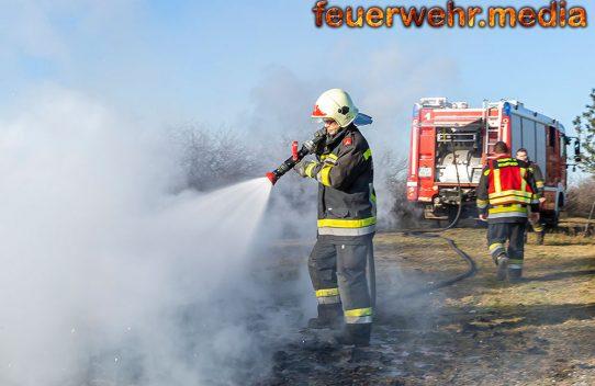 Feuerwehreinsatz nach illegaler Entsorgungsaktion in einem Weingarten