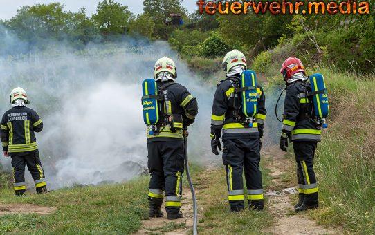 Flurbrand im Langenloiser Weraingraben