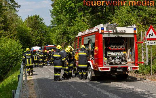 Tödlicher Verkehrsunfall zwischen Meisling und Nöhagen