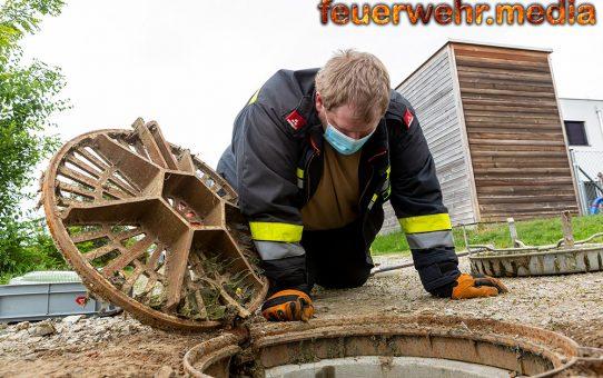 Humorvolle Tierrettung - Junger Kater aus einem Kanalrohr gerettet