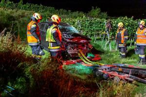 Fahrzeugabsturz von der L100 in einen tiefer gelegenen Weingarten