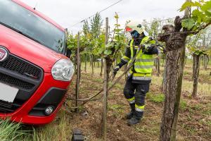 Pkw kommt vom rechten Weg ab und lehnt sich an eine Weingartenzeile an
