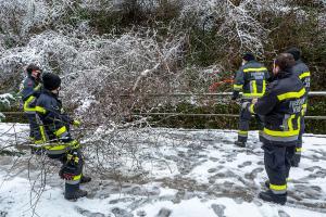 Umgestürzter Baum blockiert den Alauntalweg